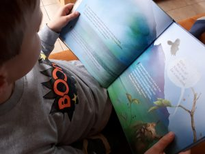 prentenboek boekiedelen raaf en papagaai lefebure bakker