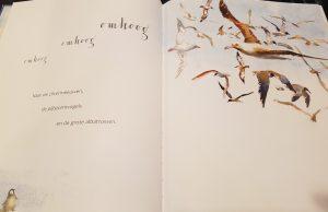 prentenboek pinguin wil vliegen guest bentley
