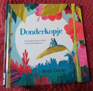 prentenboek Donderkopje Benji Davies Edward van de Vendel
