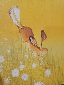 prentenboek De haas met de grote voeten Catherine Rayner