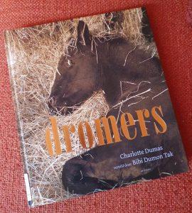 fotoboek Dromers Charlotte Dumas en Bibi Dumon Tak